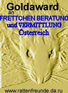 gold_award_von_robert_vollmann.jpg
